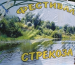 «СтреКоЗа-2013»: фрунзенцы – среди победителей