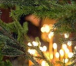 Начинается Рождественский пост